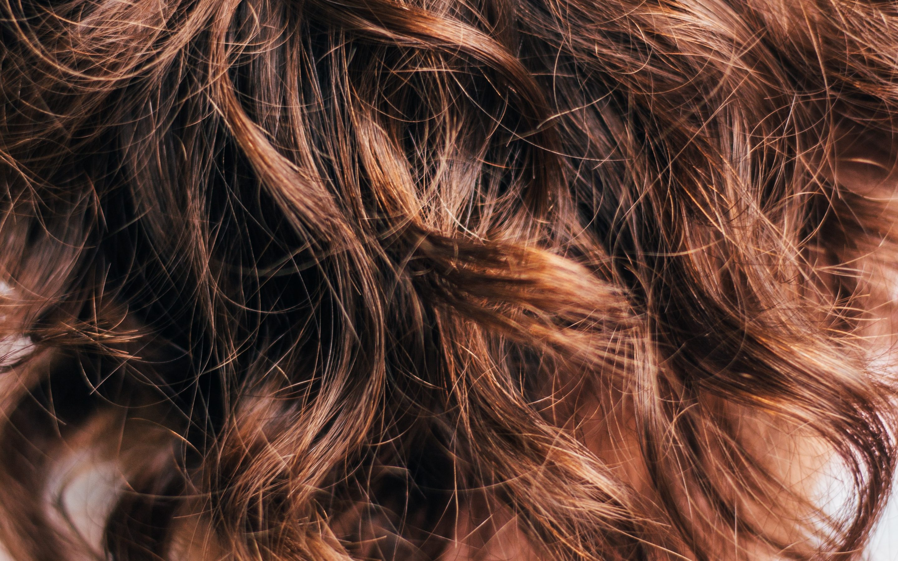 Split Ends 101: What causes them and how to deal with them